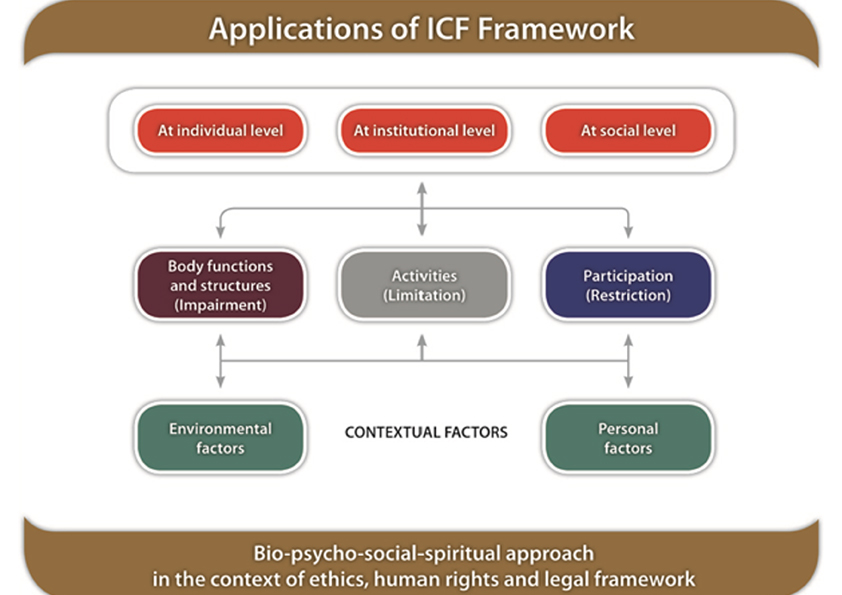 Colour image showing the Applications of the 2001 WHO ICF Framework